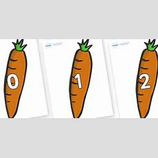 Numbers 031 On Carrots  031, Foundation Stage Numeracy