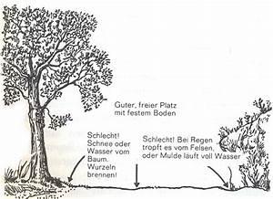 Was Braucht Man Zum Grillen : richtig feuer machen ~ Eleganceandgraceweddings.com Haus und Dekorationen