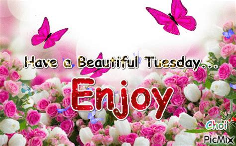 Have A Beautiful Tuesday Pictures, Photos, and Images for