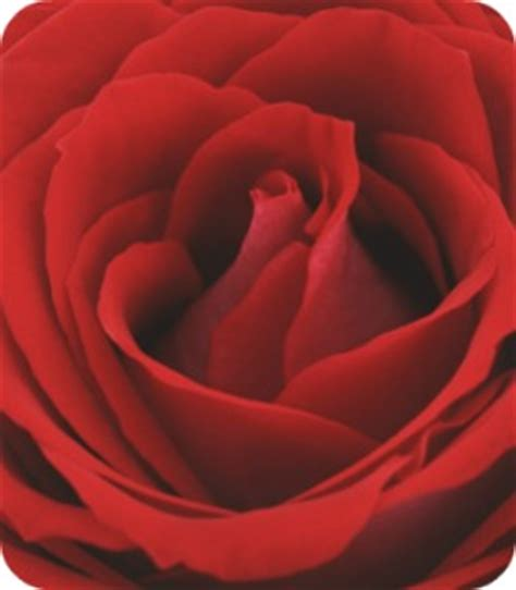 anniversary dinner prayer