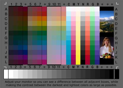 Greyscale And Color Test Card From Corel Paint