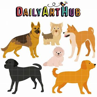 Dog Breeds Clip Loveable Hub Creatures Animals