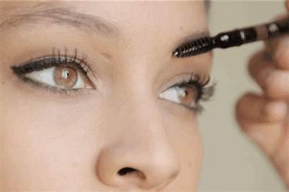 Esculpido Cejas Niky Curso Diciembre Makeup Artist