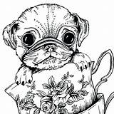 Coloring Pug Dog Adults Printable Colouring Dogs Adult Teacup Animal Puppy Sheets Bestcoloringpagesforkids Puppies Getcolorings Whitesbelfast Pusat Hobi Getdrawings Olphreunion sketch template