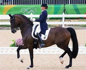 Olympic Dressage Grand Prix Day 1 Photo Gallery – Dressage ...