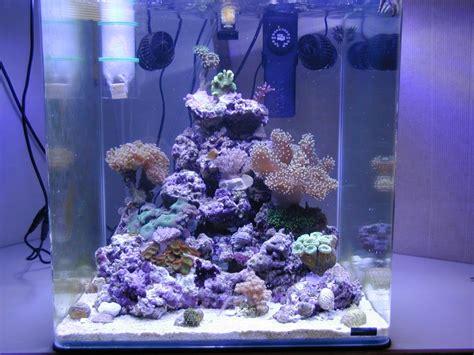 photos aquarium eau de mer