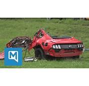 T&246dlicher Unfall 450 PS  Mustang Zerschellt Am Baum