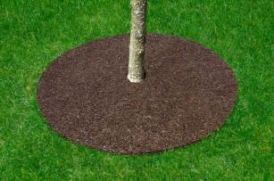 Carpet Tiles Usa by Rubber Tree Rings Instead Of Mulch