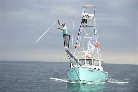 Pinwheel Boat by Tuna Fishing Gloucester Bluefin Tuna Reality