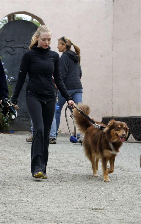 Amanda Seyfried Walks Her Dog in Hollywood Hills – HawtCelebs