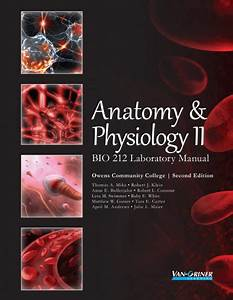 Anatomy  U0026 Physiology Ii  U2013 Bio 212 Laboratory Manual Second