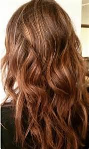 Warm Brown Hair Color with Highlights