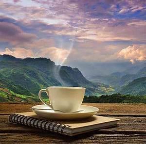 Wie Viel Löffel Kaffee Pro Tasse : wie viel koffein hat schwarzer tee kobu teeversand ~ Orissabook.com Haus und Dekorationen