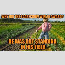 Bad Pun Scarecrow Imgflip