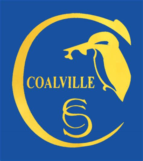 bringing competitive swimmers coalville swimming club