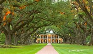 wedding venues in louisiana louisiana plantation wedding venues venue safari