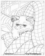 Coloring Pages Haven Whisker Quilt Cats Jason Quilts Adult Bluecat Books Hamilton Cat Adults раскраски Unique антистресс хобби вдохновение арт sketch template