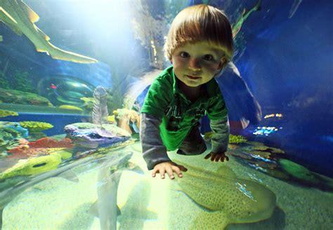 ripleys aquarium toronto promo codes 20 regular