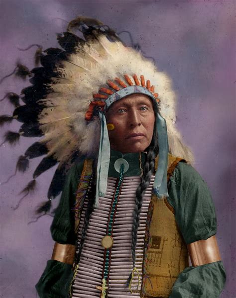 Indian Chief Image by Colorized American Indian Chief Photograph By Alex Lim