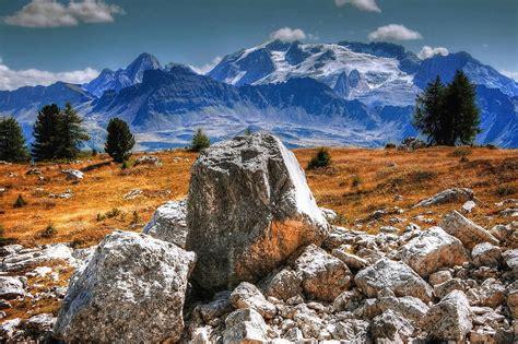 picture tree mountain field landscape stone grass