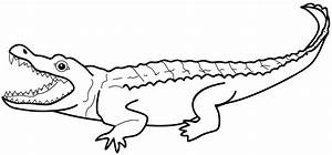 Alligator Clipart Black And White | Clipart Panda - Free ...