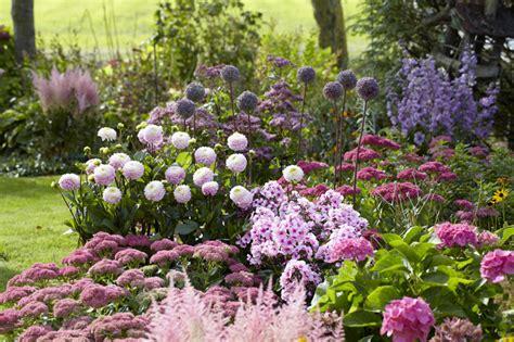 Garten Blumen Pflanzen|ber 1000 Ideen Zu Staudenbeet Auf