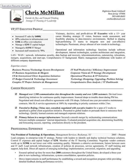 Vp Information Technology Resume by Technical Resume Writers