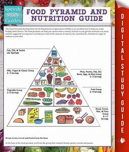 Food Pyramid And Nutrition Guide  Speedy Study Guide  By