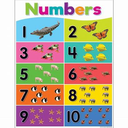 Numbers Chart Colorful Teacher Resources Learning Created