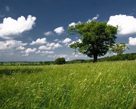Cool Hd Nature Desktop Wallpapers Landscapeamazing
