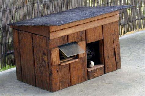 cabane exterieure pour chat diy cr 233 er une cabane pour chat en bois en 7 233