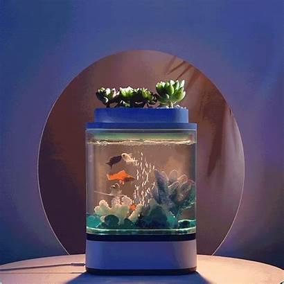 Fish Aquarium Tank Mini Decorations Cleaning Usb