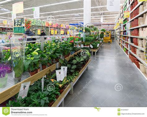 moscow russia february 15 2015 potted plants in the store leroy merlin leroy merlin