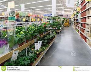 Leroy Merlin 15 Aout : moscou r ssia 15 de fevereiro de 2015 plantas em pasta ~ Dailycaller-alerts.com Idées de Décoration