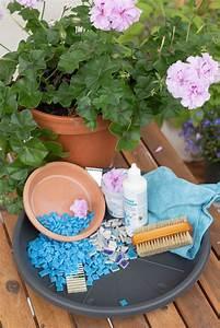 Vogeltränke Selber Bauen : vogeltr nke selber machen das garten fr ulein zeigt dir wie es geht ~ Orissabook.com Haus und Dekorationen