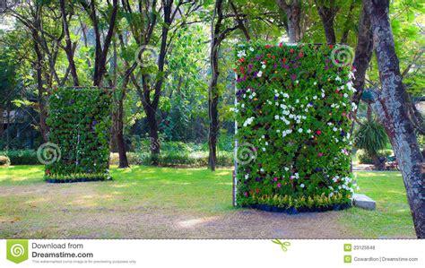 Vertikaler Garten Stockfoto. Bild Von Blüte, Klar, Outdoor