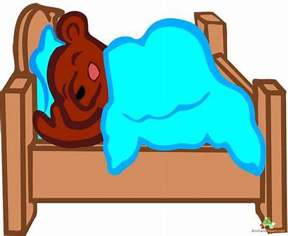 Bed Clipart Bear Sleeping Clip Soft Patient