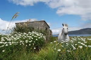 visit connemara in the west of ireland connemara escapes