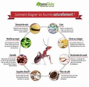 les 28 meilleures images du tableau infographies With maison de l ecologie 13 8 solutions naturelles pour chasser les fourmis
