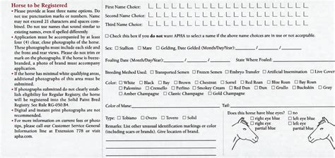 apha registration form how to register a paint horse apha