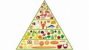 Food Pyramid Nutrition Animation Motion Background ...