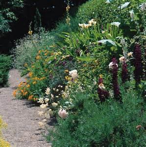 Perennial Flower Garden Border