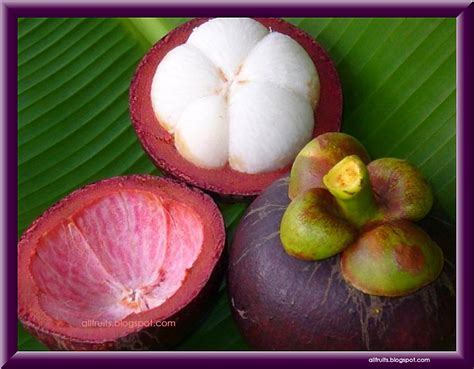 fruit that starts with the letter i fruits in the world fruits name starts with the letter quot m