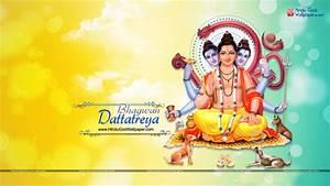 Bhagwan Dattatreya HD Wallpaper, Photo Free Download