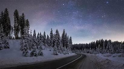 Winter Forest Night Pokljuka December Guides Program