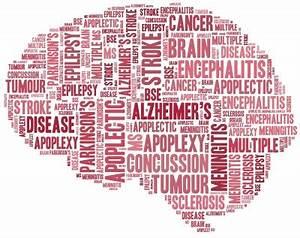 Disorders - Brain Foundation