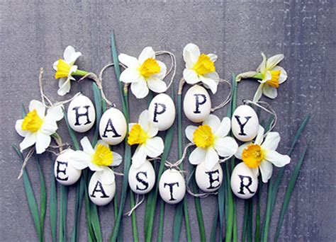 meaning  easter flowers albuquerque florist