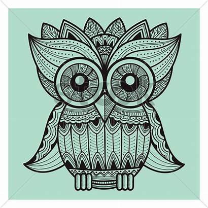 Owl Intricate Vector Illustration Designs Stockunlimited Graphic