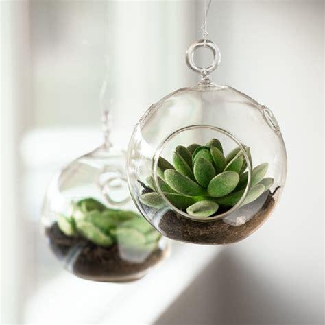Terrarium Im Glas by Sukkulenten Im Glas Im Blickfang Kreative Deko Ideen Mit