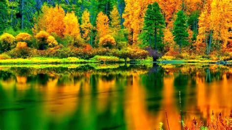 Zelta rudens šogad var būt īpaši krāšņs - manaOga.lv